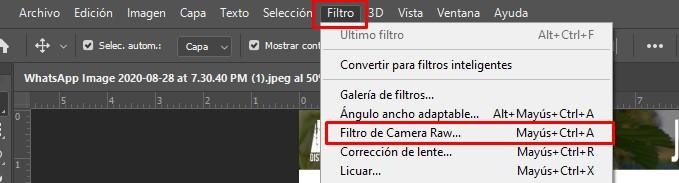 filtro camara raw